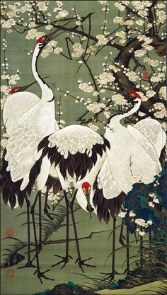 伊藤 若冲 (Ito Jakuchu) - 梅花群鶴図 ( scene of peach blossoms and cranes) - Mid-Edo Period (18th Century ). °