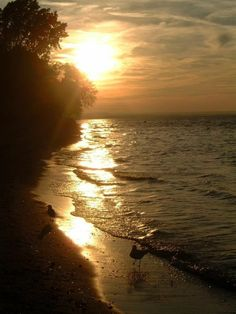 Lake Ontario, Canada (Photographer: B. Redman)