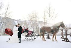 Ride Away in a Horse and Carriage