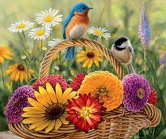 XiNature.com - Painting Mums Birds Basket Colorful Fall Flowers Beautiful Autumn Flower Wallpaper Hd For Desktop Free Download