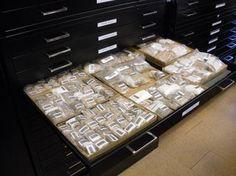 Cuneiform Storage | cuneiform.library.cornell.edu