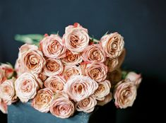Hues of Coral Types Of Flowers, Cut Flowers, Winter Wedding Flowers, I Believe In Pink, Pink Rose Flower, Floral Event Design, Rose Photos, Nature Tree, Antique Roses