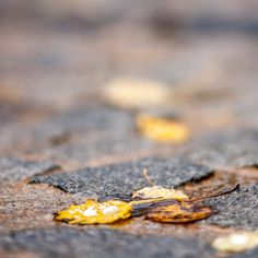 Check out Granite way by ChristianThür Photography on Creative Market Abstract Photos, Granite, Marketing, Creative, Check, Summer, Pictures, Photography, Abstract