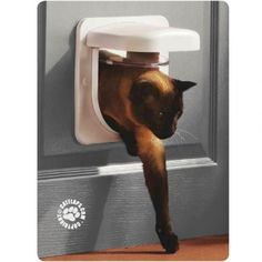 Technologically advanced yet simple to operate, the Microchip Petporte Smart Flap® reads your cat's microchip to allow entry to your home, without the need for a collar. Pet Products, Your Pet, Cats, Gatos, Kitty Cats, Cat, Kitty, Serval Cats, Pet Supplies