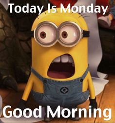 Today Is Monday, Good Morning monday minions good morning monday quotes good morning quotes hello monday minion quotes monday morning facebook quotes monday morning pics monday morning pic funny monday morning