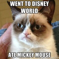 Went to Disney World...