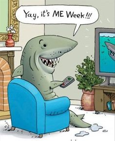 Love me some shark week. I don't even care if its the same shows every year