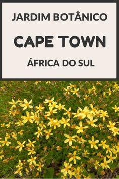 Conheça o Jardim Botânico Kirstenbosch em Cape Town (África do Sul) Dica de viagem para o seu roteiro pela Garden Route / Rota Jardim, Cidade do Cabo / Cape Town
