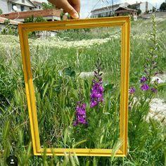 Okulumuzun arka bahçesinden yeni güne merhaba diyorum 😎#cicekler #photooftheday #mybestmoment #natureart #fotografkaresi