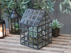 Glass & Metal Decorative Greenhouse – Heavenly Homes & Gardens Industrial Greenhouses, Glass Green House, Roof Plants, Dome Greenhouse, Glass Terrarium, Terrariums, Inside Home, Hanging Lanterns, Plant Holders