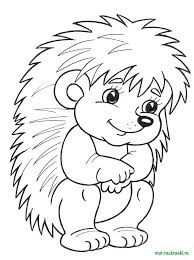 Hedgehog Coloring Page Animal Coloring Pages, Colouring Pages, Coloring Sheets, Coloring Books, Adult Coloring, Hedgehog Craft, Applique Patterns, Digital Stamps, Printable Coloring