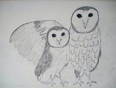 Drawing point study #basicdrawing #sketch #owl #diy