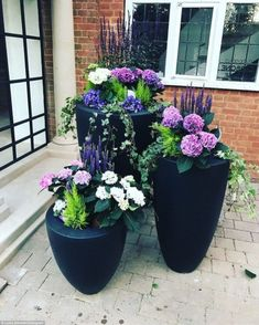 Potted: Luisa showcased her handy work and captioned the shot: All the pretties gardening pots entrance flowers'. Garden Trellis, Garden Planters, Potted Garden, Planters For Front Porch, Potted Plants Patio, Front Porch Flowers, Fall Planters, Big Garden, Garden Ideas In Front Of House