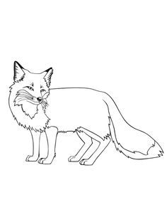 Bilderesultat for fox  coloring pages for kids printable