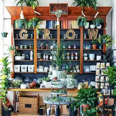 Garden center displays - These Are the Prettiest Plant Shops In the World – Garden center displays Flower Shop Decor, Flower Shop Design, Flower Shops, Design Shop, Garden Nursery, Plant Nursery, Garden Center Displays, Garden Centre, Flower Shop Interiors