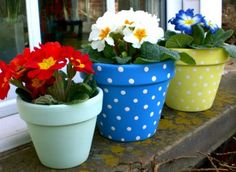 Three painted plant pots. Beautiful bright colours looking fab on a windowsill!