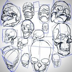 Image result for skull perspective drawing