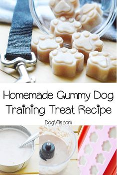 If you're looking for a unique reward to use in training sessions, you'll love our homemade gummy dog training treat recipe! Check it out! You will find interesting recipes for dog on my account. Dog Treat Recipes, Healthy Dog Treats, Dog Food Recipes, Pet Treats, Homemade Dog Cookies, Homemade Dog Food, Homemade Recipe, Dog Training Treats, Pumpkin Dog Treats