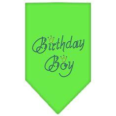 Birthday Boy Rhinestone Bandana Lime Green Small
