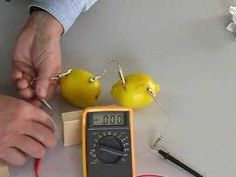 Oh so cool science experiment:  How to Make a Lemon Battery - Yep!  It is a fruit battery tutorial!