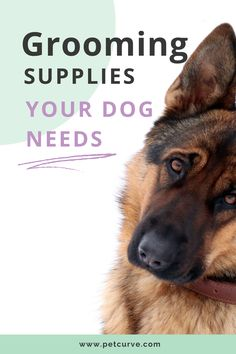 Cleaning Dogs Ears, Ear Cleaning, Cleaning Wipes, Dog Grooming Tips, Dog Grooming Supplies, Dog Ear Cleaner, Ear Health, Oils For Dogs, Love Natural