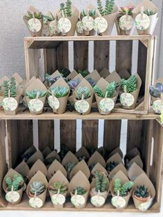 cactus party favors at this rustic boho baby shower are gorgeous! See more . The cactus party favors at this rustic boho baby shower are gorgeous! See more . The cactus party favors at this rustic boho baby shower are gorgeous! See more . Boho Baby Shower, Cute Baby Shower Ideas, Boy Baby Shower Themes, Girl Shower, Baby Shower Parties, Babyshower Themes For Girls, Baby Shower Nails Boy, Baby Shower Balloon Ideas, Baby Shower Cake For Girls