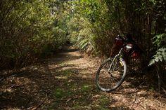 Route: Tasmania Trail