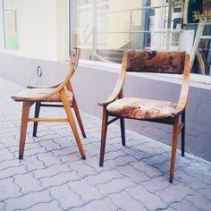 Polska klasyka wzornictwa - krzesła skoczek - produkcja Zjednoczenie Przemysłu Meblarskiego Zamojskie Fabryki Mebli Great polish design  #60er #60s #lata60te #60erjahre  #vintage #interiors #industrial #design #loft #retro #vintageshop #sklepvintage #poznan #midcenturymodern #midcentury #vintagestyle #wnętrza #old #antiques #starocie #brocante #krzesło #chair #chairs #stuhl #chairs #skoczek #skoczki