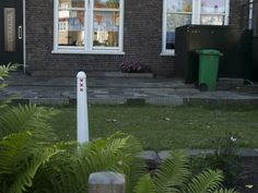 Lol rare find. !I'm admittedly envious of anyone in Amsterdam with a front yard...