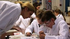 Clifton High School partners with Bristol Museums