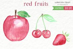Watercolor Clip Art - Red Fruits by Maria B. Paints on @creativemarket
