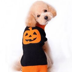 Pumpkin & Skull Sweater for Dogs Pet Halloween Costumes: www.teelieturner.com #pets