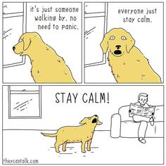 Stay calm!!