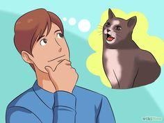 M Cómo comunicarte con tu gato Communicate with Your Cat Step 1.jpg