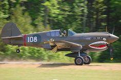 P-40 War Hawk