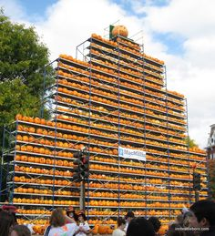 Keene, NH   Jack-O-Lanterns at Fall Festival