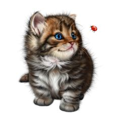 Cute Animal Illustration, Cute Animal Drawings, Cute Animals Images, Animals And Pets, Baby Animals Super Cute, Cat Coloring Page, Anime Animals, Cat Drawing, Animal Paintings
