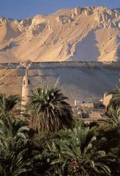 View over Dakhla Oasis Egypt
