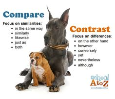 compare and contrast friends literacy school when an essay asks you to compare and contrast it s important to know the