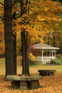 """A gazebo behind the Peninsula Library is surrounded by fall color""...Peninsula, Ohio"