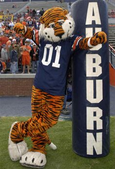 He is SO FREAKING ADORABLE!!! :o) Aubie the Tiger- Auburn University WAR EAGLE!