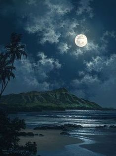 """""""Waikiki Night Sky"""" by Hawaii seascape artist, Roy Tabora. Beautiful Moon, Beautiful World, Beautiful Places, Moon Pictures, Pretty Pictures, Images Of Moon, Symphony Of The Seas, Shoot The Moon, Belle Photo"""