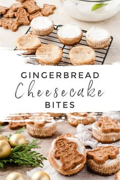 Put these adorable Mini Gingerbread Cheesecake Bites on your baking list for this holiday season. They are easy to make and absolutely delicious. Cheesecake Bites, Cheesecake Recipes, Dessert Recipes, Dessert Ideas, Gingerbread Cheesecake, Gingerbread Cake, Gingerbread Recipes, Ginger Molasses Cookies, Ginger Snap Cookies