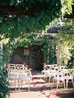 Ivy Hung Arbor Wedding Ceremony with Scattered Rose Petals // Photography…