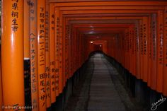 #Fushimi Inari-taisha #Japon
