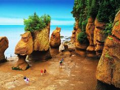 18 Amazing World Tourist Attractions - Fundy Bay, Canada