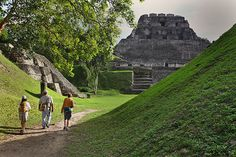 New Discovery Shows Mayans Valued Essential Workers, Too Nature Research, Mayan Cities, Mangrove Forest, Sea Level Rise, Natural History, Climate Change, Habitats, Monument Valley, Discovery