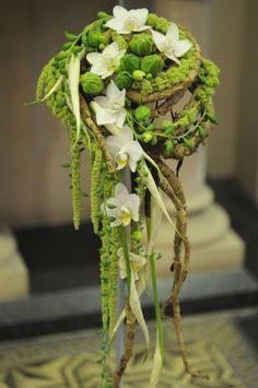 Amazing texture of spathyphyllum spathe. Orchids. String of bananas ( senicuo not rowliensis) and green amaranthus in what appear to be air roots amazing shape