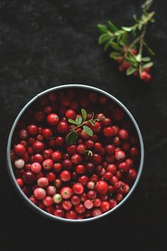 Berries (by Sandra/Little World)