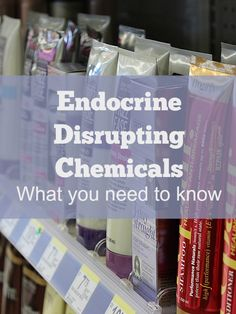 Endocrine Disrupting Chemicals 2 PT